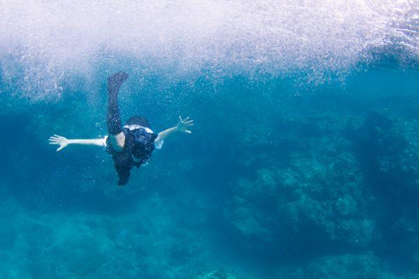 Aquatic 3